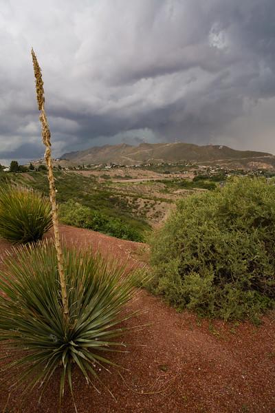TX-2006-009: El Paso, El Paso County, TX, USA