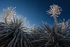 TX-2013-066: El Paso, El Paso County, TX, USA
