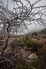 TX-2013-447: El Paso, El Paso County, TX, USA