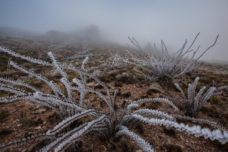 TX-2013-457: El Paso, El Paso County, TX, USA