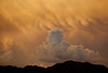 TX-2011-058: El Paso, El Paso County, TX, USA