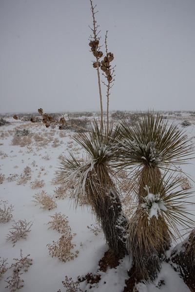 TX-2013-002: El Paso, El Paso County, TX, USA