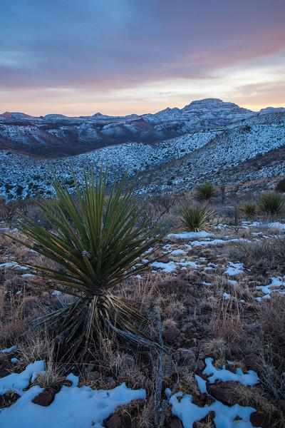 TX-2013-104: Pinto Canyon, Presidio County, TX, USA