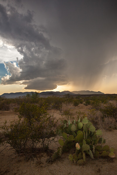 TX-2012-081: Big Bend National Park, Brewster County, TX, USA