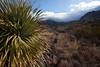 TX-2011-067: El Paso, El Paso County, TX, USA