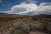 TX-2010-076: Black Gap Wildlife Management Area, Brewster County, TX, USA