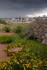 TX-2006-001: El Paso, El Paso County, TX, USA