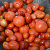 20101220_Stock_Tomatoes-1