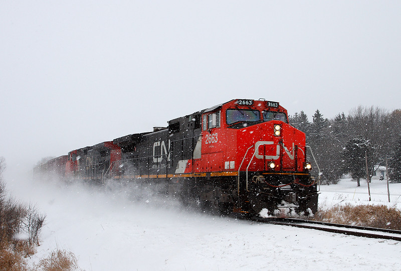 Canadian National 2663 (GE C44-9W) - Ackerville, WI