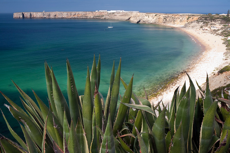 Mareta beach and bay, with Sagres point on the background and agave plants on the foreground. Town of Sagres, municipality of Vila do Bispo, district of Faro, region of Algarve, southwestern Portugal