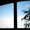 Silhouette of a tree branch through a window, Faro, Portugal