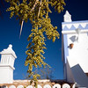 Typical architecture, town of Faro, region of Algarve, Portugal