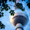 Tree branches with the top of the Television Tower on the blurred background, Berlin, Germany