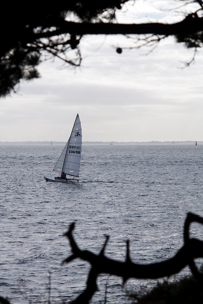 Boat sailing near Kerpenhir point, town of Locmariaquer, departament of Morbihan, Brittany, France