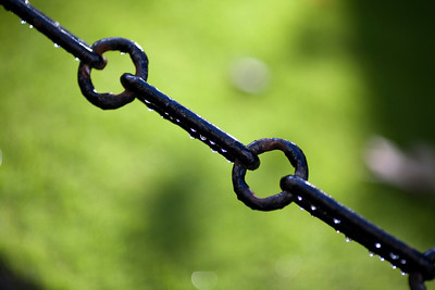 Chain with rain drops, Library Square, Trinity College, Dublin, Ireland