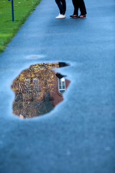 Rain puddle, Trinity College, Dublin, Ireland