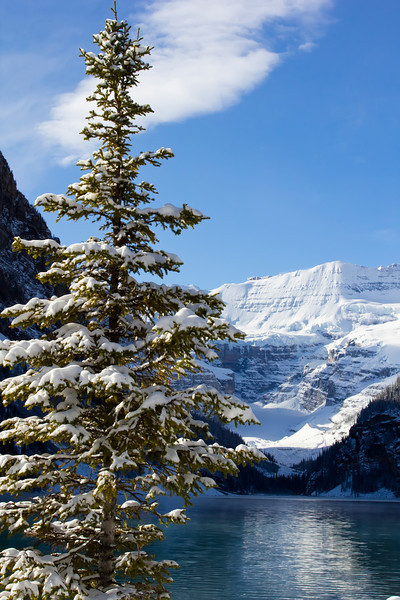 Winter in Lake Louise