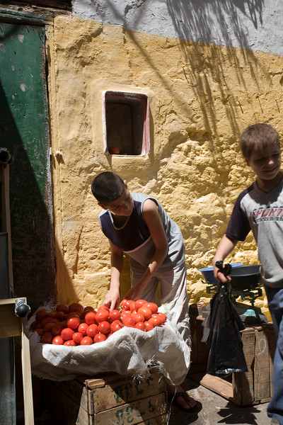 Kids selling tomatos in the souk, Tetouan, Morocco