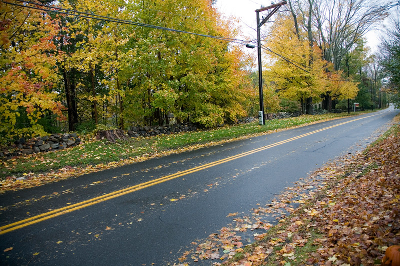 Autumnal scene: a secondary road and fallen leaves in Connecticut, USA