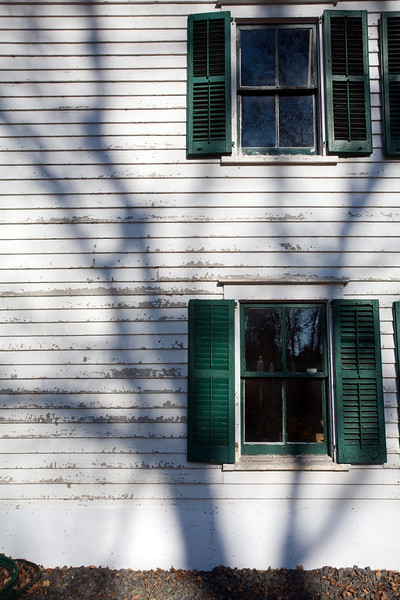 The shadow of a bare tree on a wall of Ambler Farm, Wilton, CT, USA