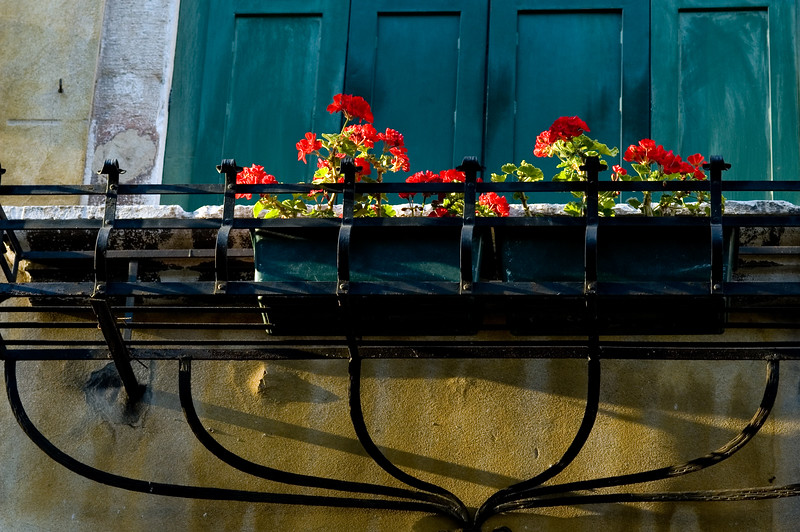 Flowerpot with red geraniums, Cannaregio quarter, Venice, Italy