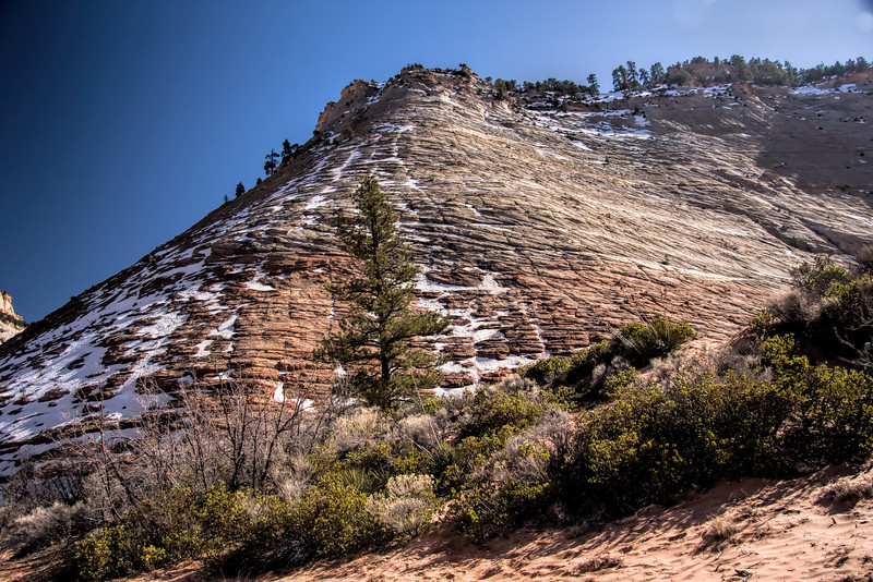 Checkerboard Mesa at the Zion National Park