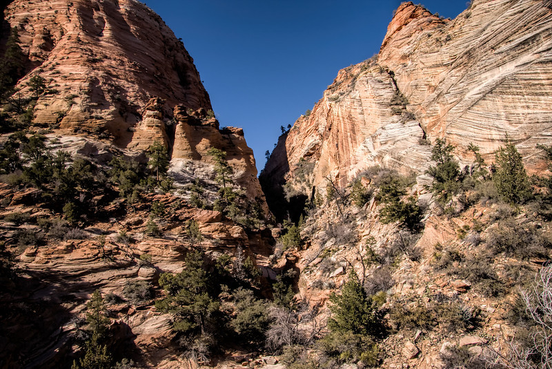 Landscape of Zion National Park