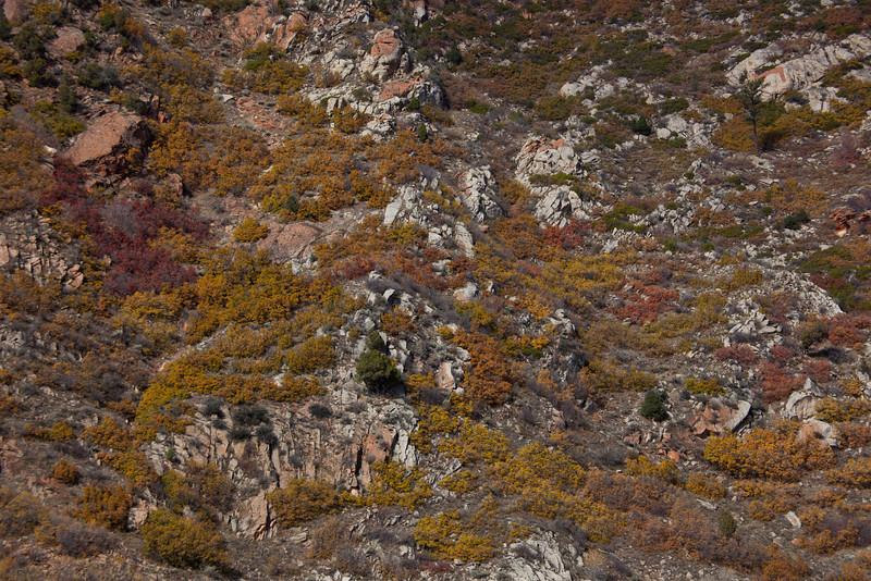 UT-2010-002: Spanish Fork Canyon, Utah County, UT, USA