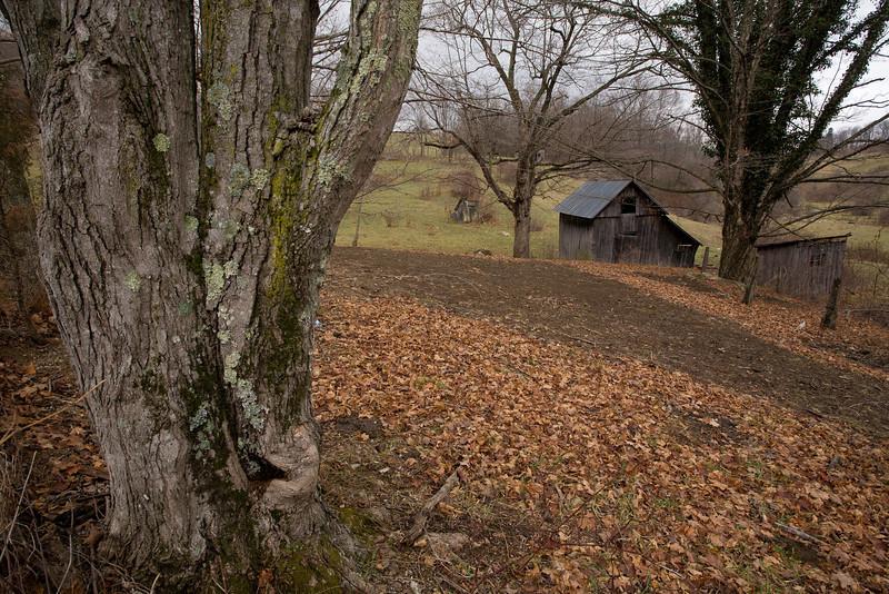 VA-2007-005: , Western, VA, USA