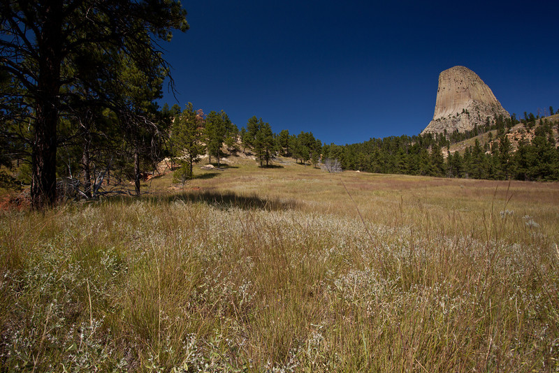 WY-2010-001: Devil's Tower National Monument, Crook County, WY, USA