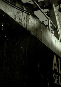 ALL-Sea-(o)
