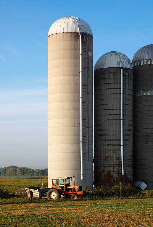 Towering Above - Brant, WI