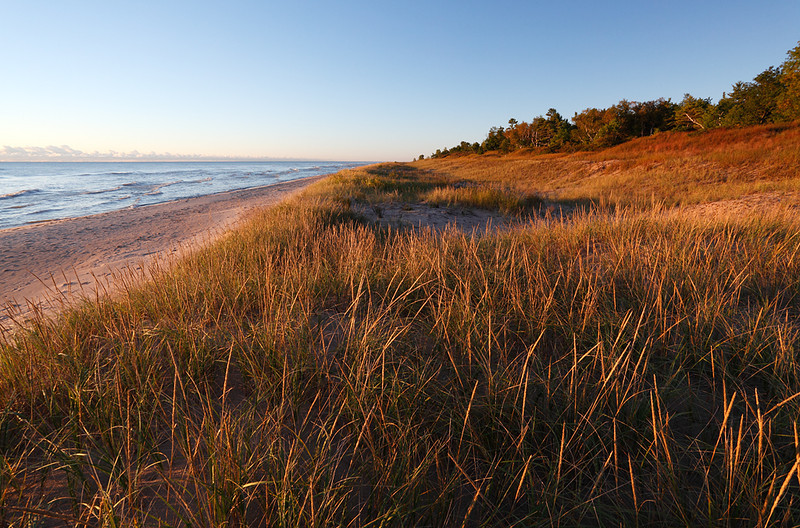 Beach - Point Beach State Forest (Wisconsin)