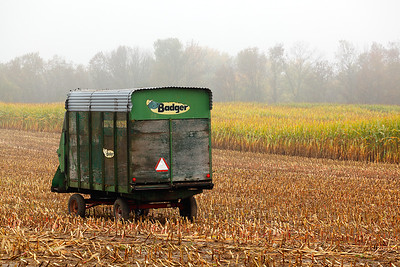 Wagon in Corn Field - Washington County (Wisconsin)