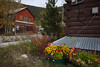 YT-2012-035: Dawson City, Klondike Region, YT, Canada