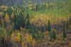 YT-2012-023: Whitehorse, Whitehorse Region, YT, Canada
