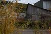 YT-2012-037: Dawson City, Klondike Region, YT, Canada