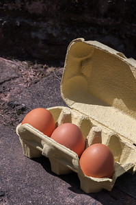 Eggs in box 3