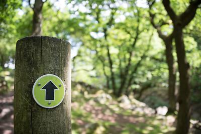 A black arrow indicates progress on a footpath through a forest.