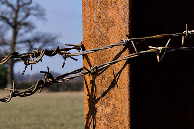 Barbed wire on metal post