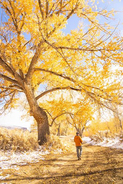 Man Hiking in Fall