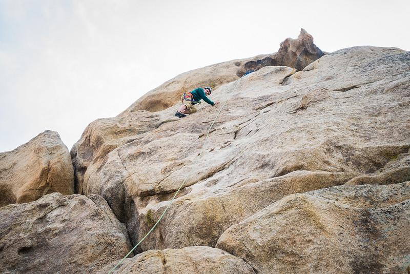 Joshua Tree Climber