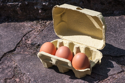 Eggs in box 1