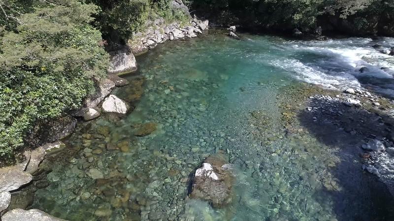Hollyford River New Zealand