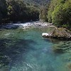 Hollyford River NZ