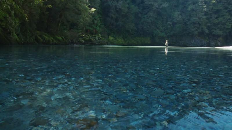 Pristine Fly Fishing River