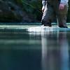 Wading New Zealand river
