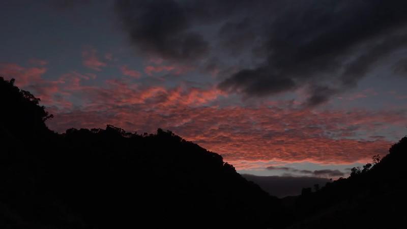 New Zealand Dawn