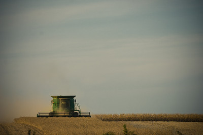 A farmer works late into the evening harvesting corn