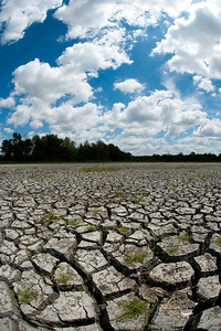 Dried cracked bed of wetland during an extended drought in the midwest United States with blue sky